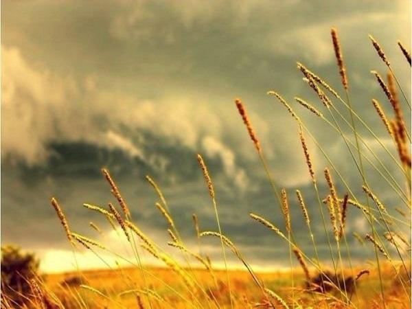 Con số may mắn khi mơ thấy giông bão